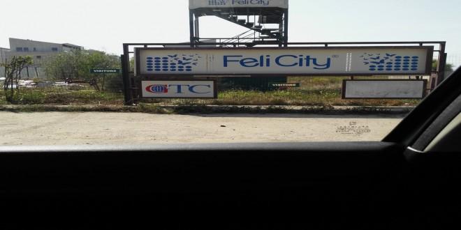 Executat imprejmuiri gard lemn – complex Feli City Bucuresti